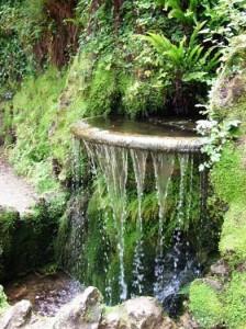Powerscourt Gardens 4