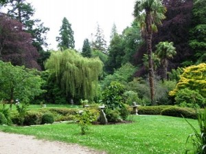 Powerscourt Gardens 6
