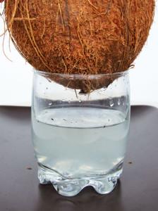 apă de nucă de cocos